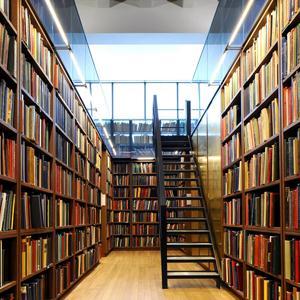 Библиотеки Змиевки
